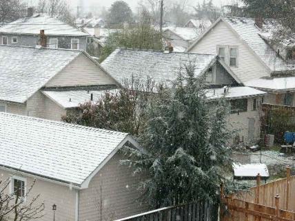 snow-march-28.jpg