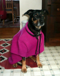 bella-coat1