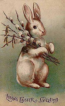 Bunny_Postcard_1907